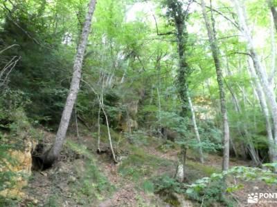 Parque Natural de Izki; senderismo comunidad madrid señalizacion senderos excursiones de verano acti